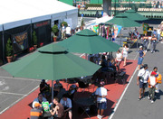 Searching For Cheap Marquee Hire Company in Melbourne?