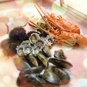 Experience the authentic Japanese flavour with the best seafood dish